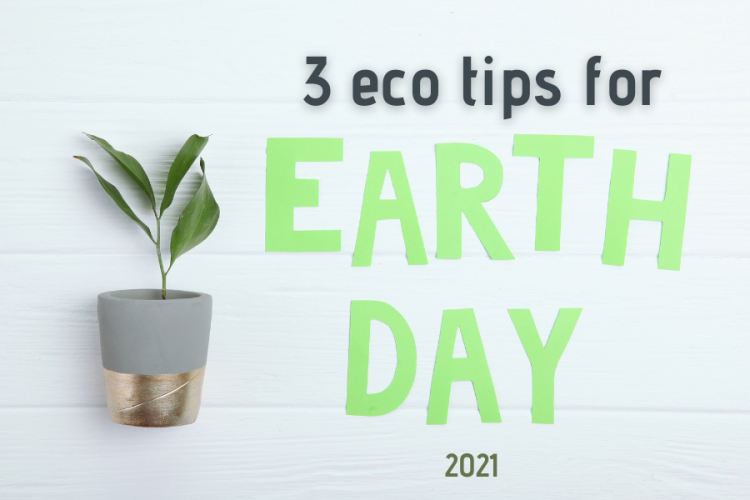 Earth Day 2021: 3 Simple Changes to Live a More Sustainable Life