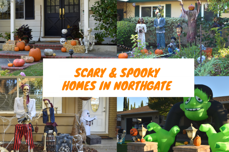 Scary and Spooky Halloween Decorated Homes in Northgate